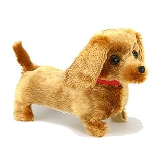 Doggy Pal