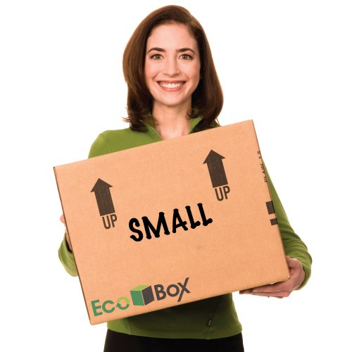 EcoBox 16 x 12 x 12 Inches, Genuine Small Moving Boxes, Pack of 15 (E-473-15) (Moving Boxes For Books compare prices)