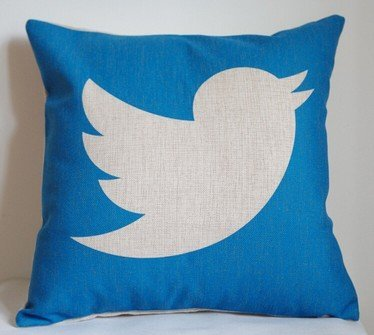 dslhxy-twitter-pillow-cover-creative-social-media-logo-twitter-throw-pillow-case-pillowcase-wholesal