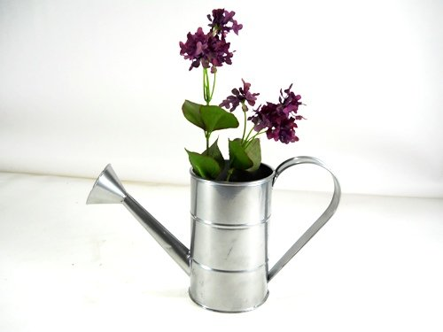 Unique coated tin 1 qt watering can home garden lawn garden irrigation cans - Unusual watering cans ...