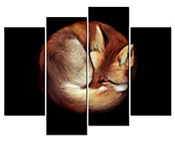 Canval prit painting Animal Wall Art a Fox Hunched As a Ball Top with Black Background 4 Panel Picture on Canvas