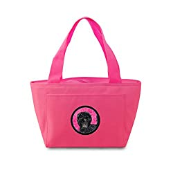 Carolines Treasures SS4787-PK Affenpinscher Lunch or Doggie Bag, Large, Pink