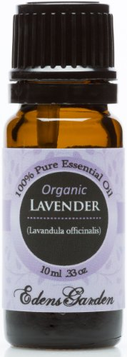 Organic Lavender 100% Pure Therapeutic Grade Essential Oil- 10 Ml