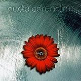 Bloom ~ Audio Adrenaline