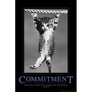 Amazon.com: Commitment Hanging Kitten Motivational Poster - 24x36 custom fit with RichAndFramous