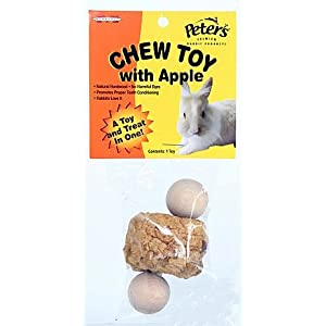Click to buy Rabbit Toy: Chew Toy With Apple from Amazon!
