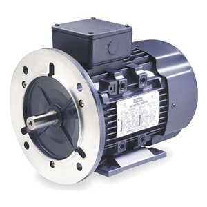 Premium Efficiency Metric Motor, Df100Ld