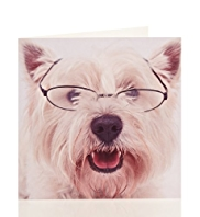 Westie Dog In Glasses Blank Card