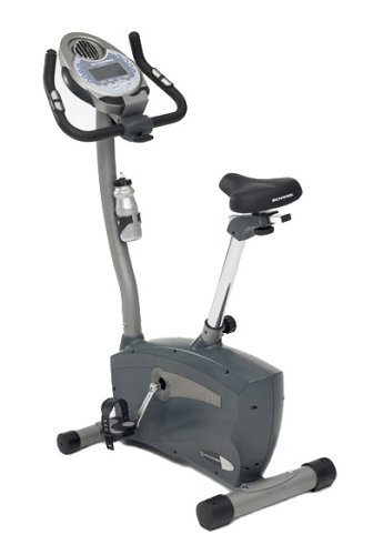 Schwinn 113 Upright Exercise Bike [Discontinued]