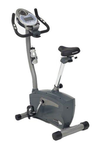 Schwinn 113 Upright Exercise Bike
