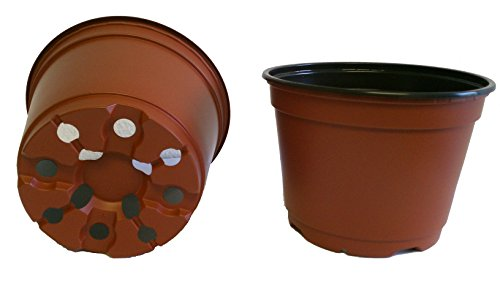 20 NEW 6 Inch TEKU Plastic Nursery Pots - Azalea Style ~ Pots ARE 6 Inch Round At the Top and 4.25 Inch Deep. Color : Terracotta (6 Plastic Pot compare prices)