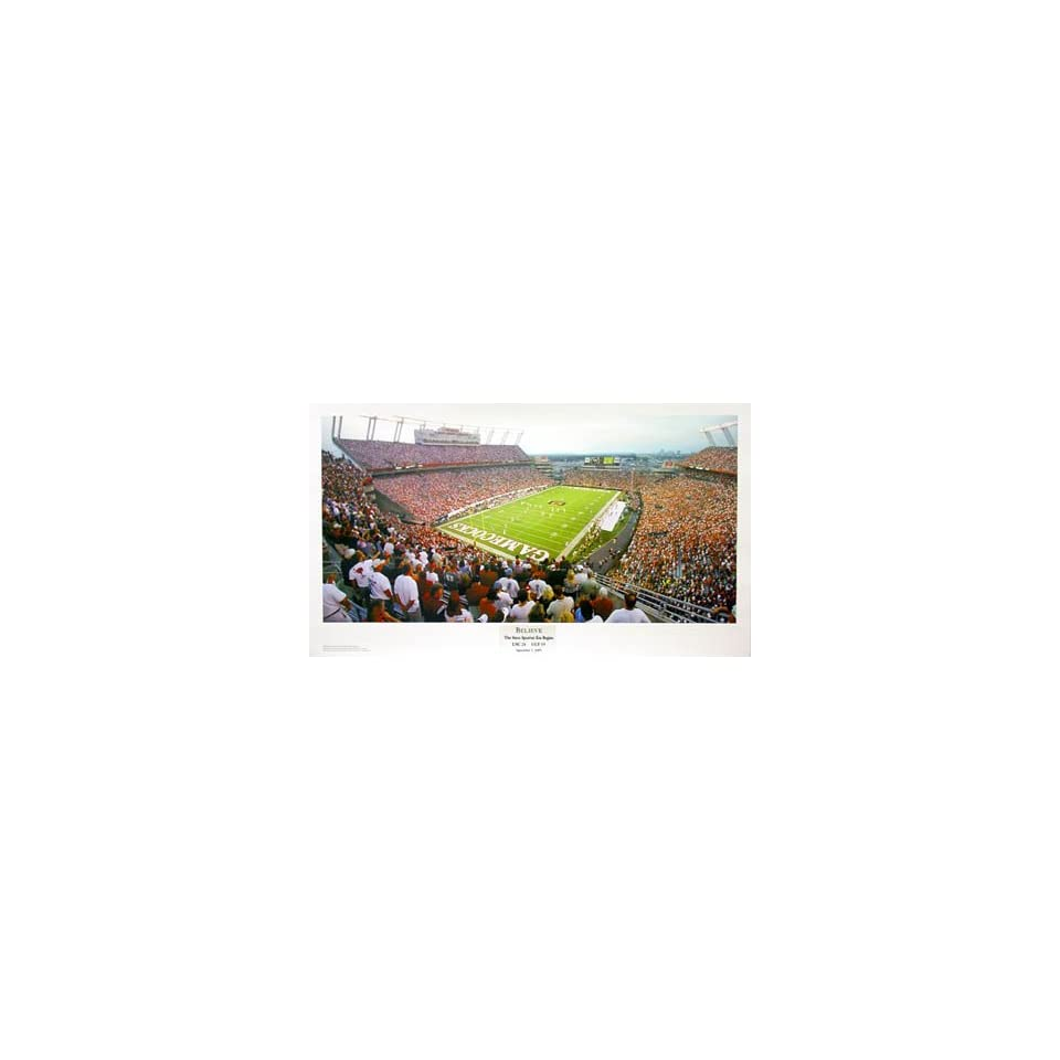 NCAA South Carolina Gamecocks Williams Bryce Stadium Picture Believe , Deluxe Frame, Black