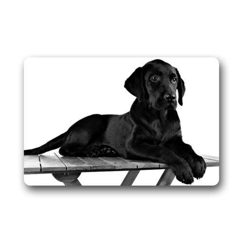 Custom Indoor Dog Gates front-136907