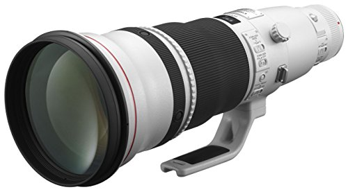 Canon 単焦点超望遠レンズ EF600mm F4L IS II USM フルサイズ対応