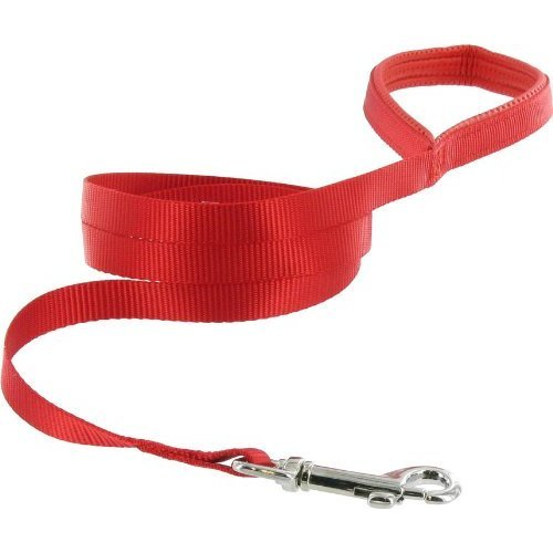 Guardian Gear Nylon Dog Lead with Nickel Plated Swivel Snaps, 6-Feet, Red