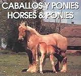 Caballos Y Ponies/Horses & Ponies (Spanish Edition)