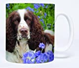 Bluebells English Springer Spaniel Mug