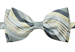 Spring Notion Boys\' Pre-tied Retro Woven Bow Tie, 5-7 Grey Yellow Stripes (GY)