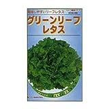カネコ種苗 園芸・種 KS100シリーズ グリーンリーフレタス 野菜100 559