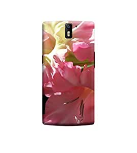 EPICCASE Premium Printed Mobile Back Case Cover With Full protection For OnePlus One (Designer Case)