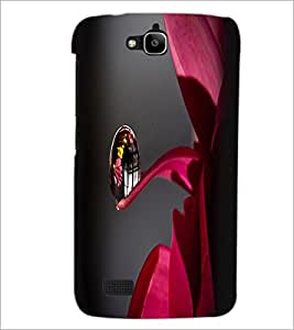 PrintDhaba Droplet D-2399 Back Case Cover for HUAWEI HONOR HOLLY (Multi-Coloured)