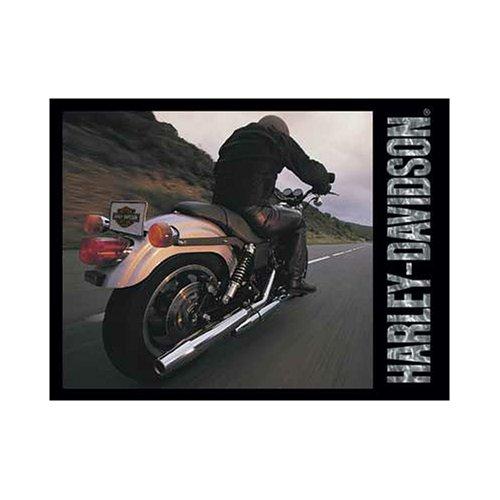 FX Schmid Harley Davidson Live To Ride 500 Piece Jigsaw Puzzle