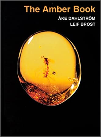 The Amber Book: Ake Dahlstrom and Leif Brost written by Lief Brost