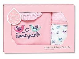 Baby Dumpling Bodysuit and Burp Cloth Set, Little Birdie, 3-6 Months
