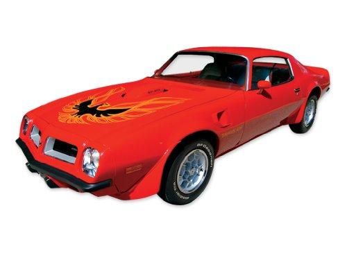 1973 1974 1975 1976 1977 1978 Pontiac Firebird Trans Am Decals & Stripes Kit - ORANGE (1974 Pontiac Trans Am compare prices)