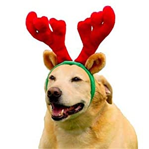 Kyjen PP01763 Holiday Antlers Wearable Dog Accessories, Large, Brown