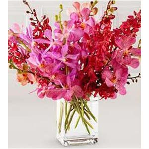 Pink Orchids | No Of Orchids Bouquet of 12 Flowers