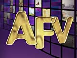 America's Funniest Home Videos: Pinatas and the Top Reasons Hamsters are Better than Rats