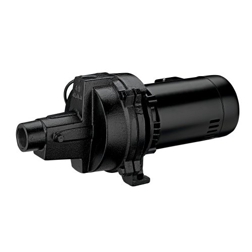 Ace; 1 HP Shallow Well Jet Pump