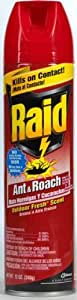 Raid Ant & Roach Killer  Outdoor Fresh  12-Ounce Cans (Pack of 12)