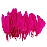 50pcs Home Decor Rose Red Goose Feather