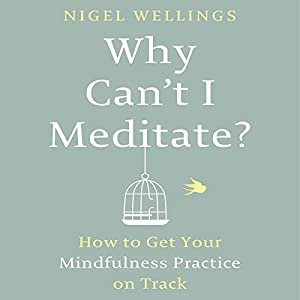 Why Can't I Meditate? Audiobook
