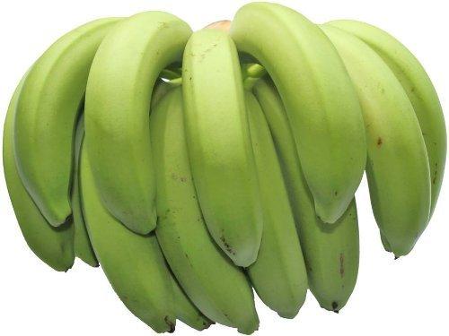沖縄県産 農薬 栽培期間中不使用 伊波さんの三尺バナナ 1房 沖縄の太陽を浴びて育った濃厚な風味のバナナ