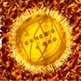 Il Cerchio D'Oro by Il Cerchio D'Oro (1999-05-04)
