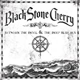 Black Stone Cherry Between The Devil & The Deep Blue Sea [VINYL]