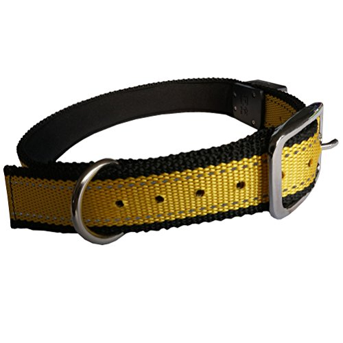 Tobetter Nylon Durable Adjustable Flashing Led Light Up Dog Safety Collar-Bright Led'S Glow & Flash-7 Colors (Yellow)