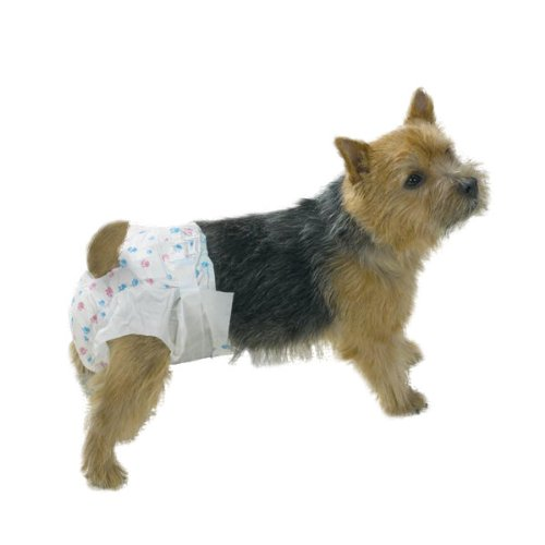 Clean Go Pet Disposable Doggie Diaper, Large