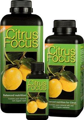 5-litre-citrus-focus-makes-500-litres-the-ultimate-feed-for-all-your-citrus-trees-oange-lemon-lime-g