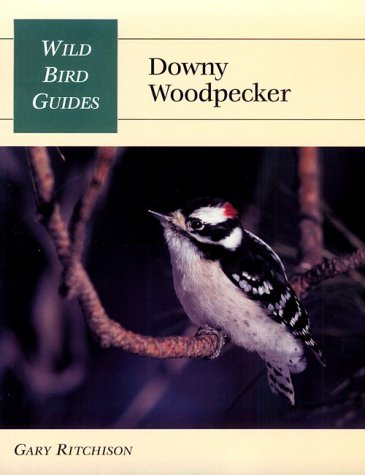 Downy Woodpecker (Wild Bird Guides)