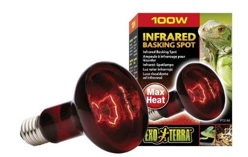 100-Watt Exo Terra Heat-Glo Infrared Spot Lamp, 120-Volt, Tortoise Food, Heat Glo Infrared Heat Lamp