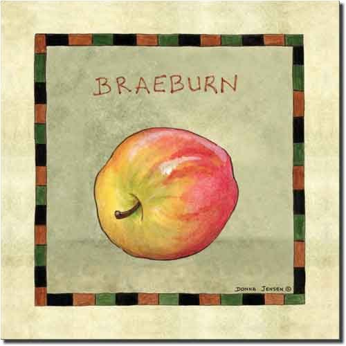 Braeburn Apple by Donna Jensen - Fruit Ceramic Accent Tile 8
