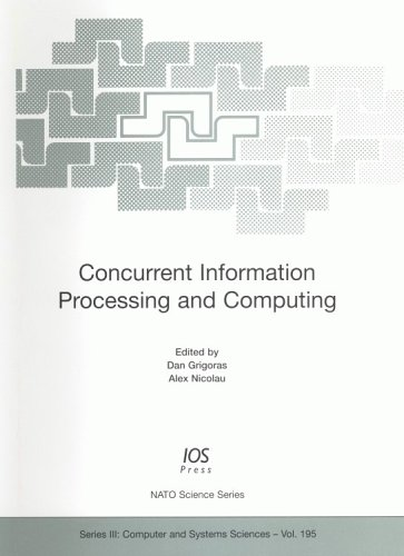 Concurrent Information Processing and Computing (NATO Science)