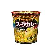明治 マジックスパイス スープカレー 平麺春雨入り カップ 25.3g×24(6×4)個入