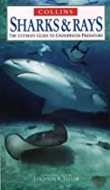 Sharks and Rays (Nature Company Guides)