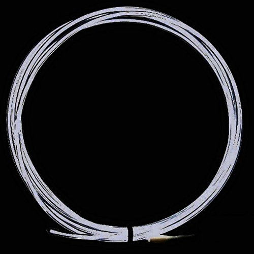 Tdltek Neon Glowing Strobing Electroluminescent Wire /El Wire + Car Cigarette Controller, White 9Ft