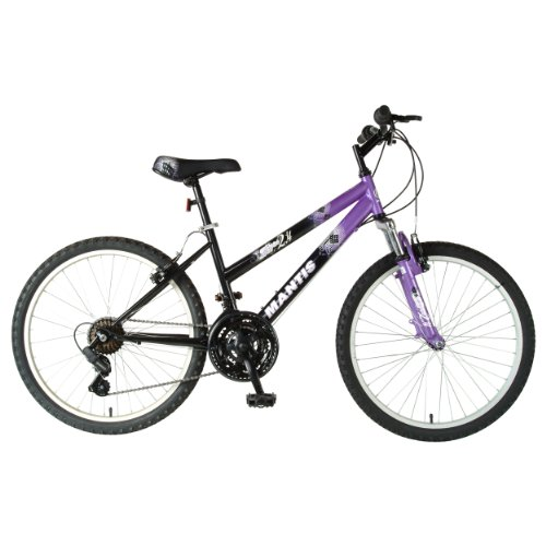 Mantis Raptor Girls' 24- Inch Bike, Purple/Black